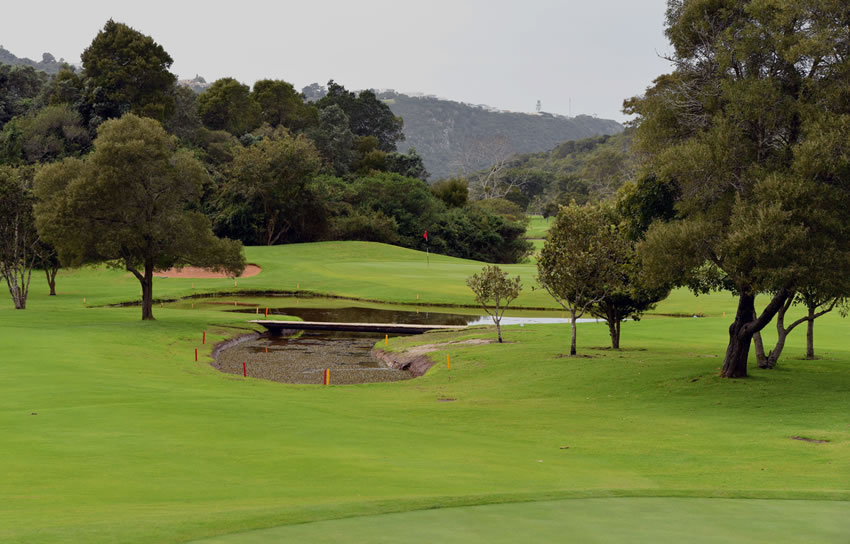 plett-golf-course-dh-2