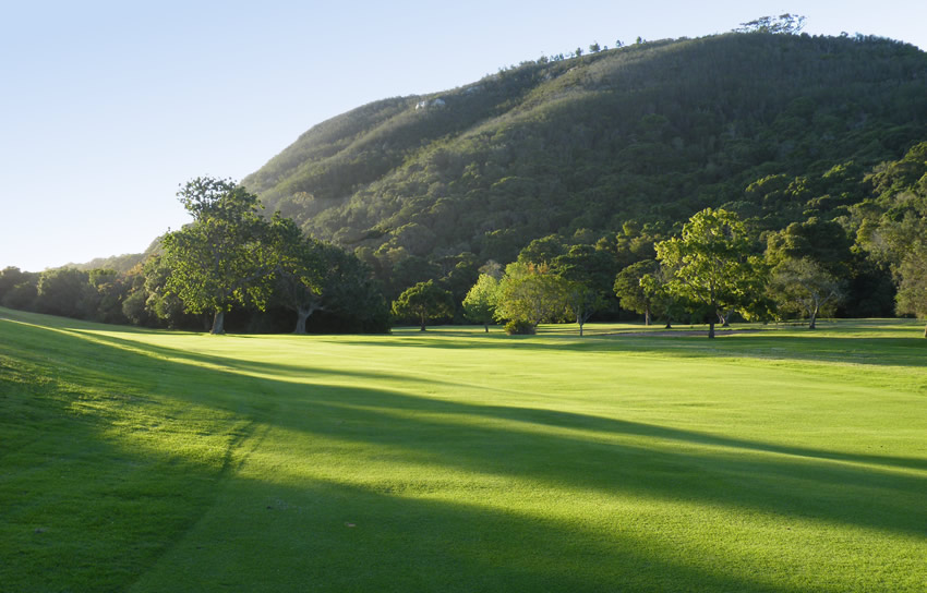 plett-golf-course-early-morning